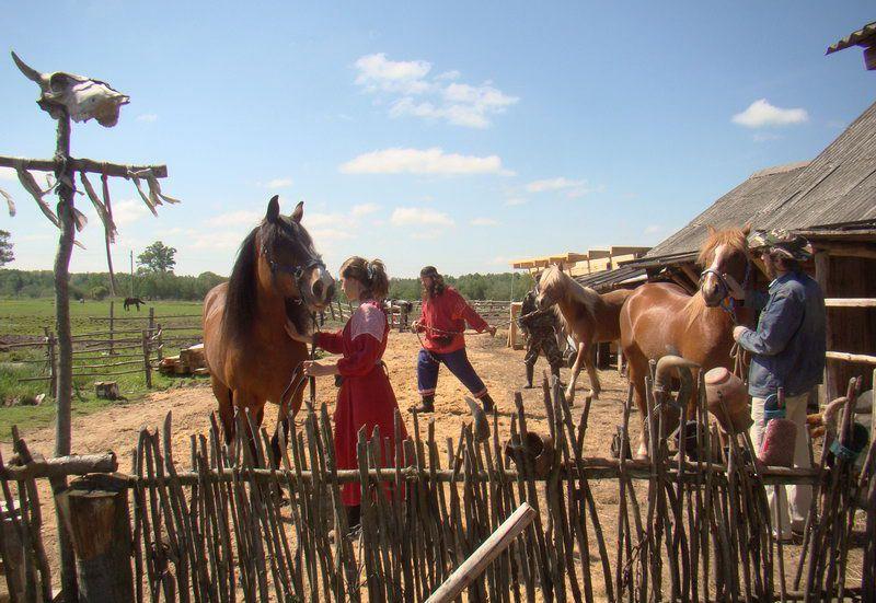 Музей рабочей лошади