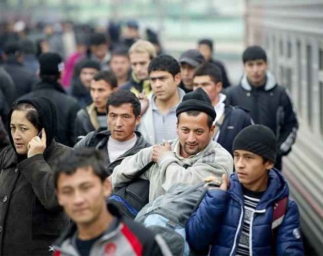 Есть ли жизнь без мигрантов