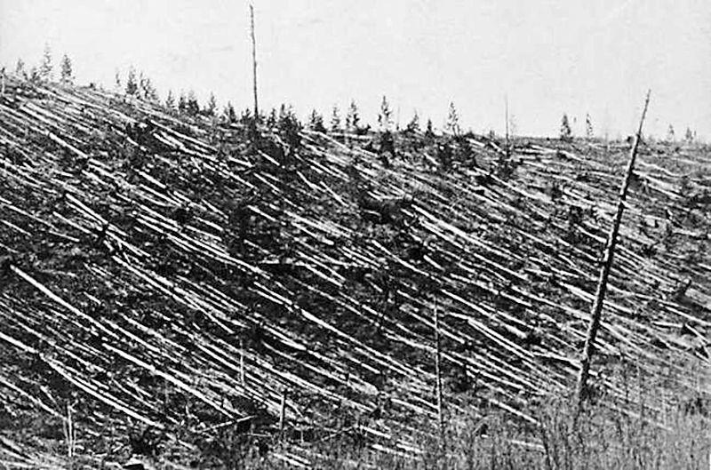 Круговой завал деревьев на месте падения Тунгусского метеорита