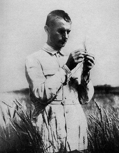 Трофим Денисович Лысенко после избрания его в 1934 г. академиком Всеукраинской академии наук