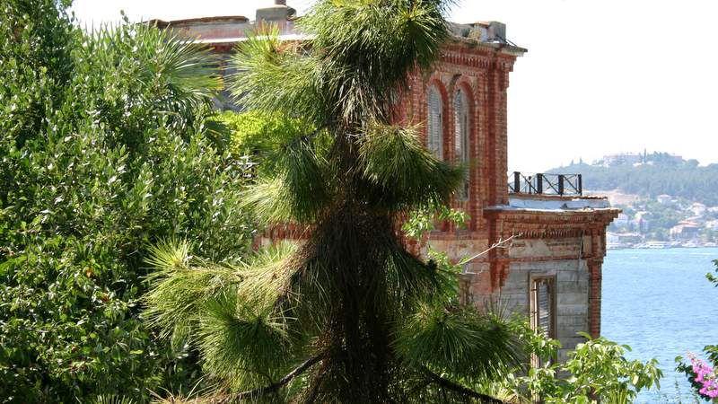 Дом Троцкого на Бююкаде